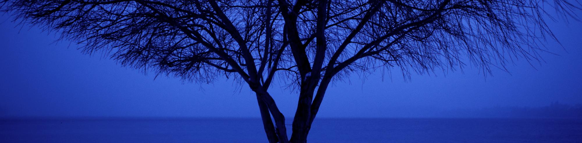 Soul Places Panos_00021.jpg