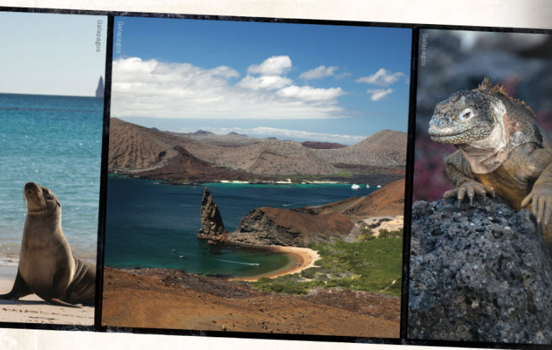 Learn about traveling to the Galapagos!