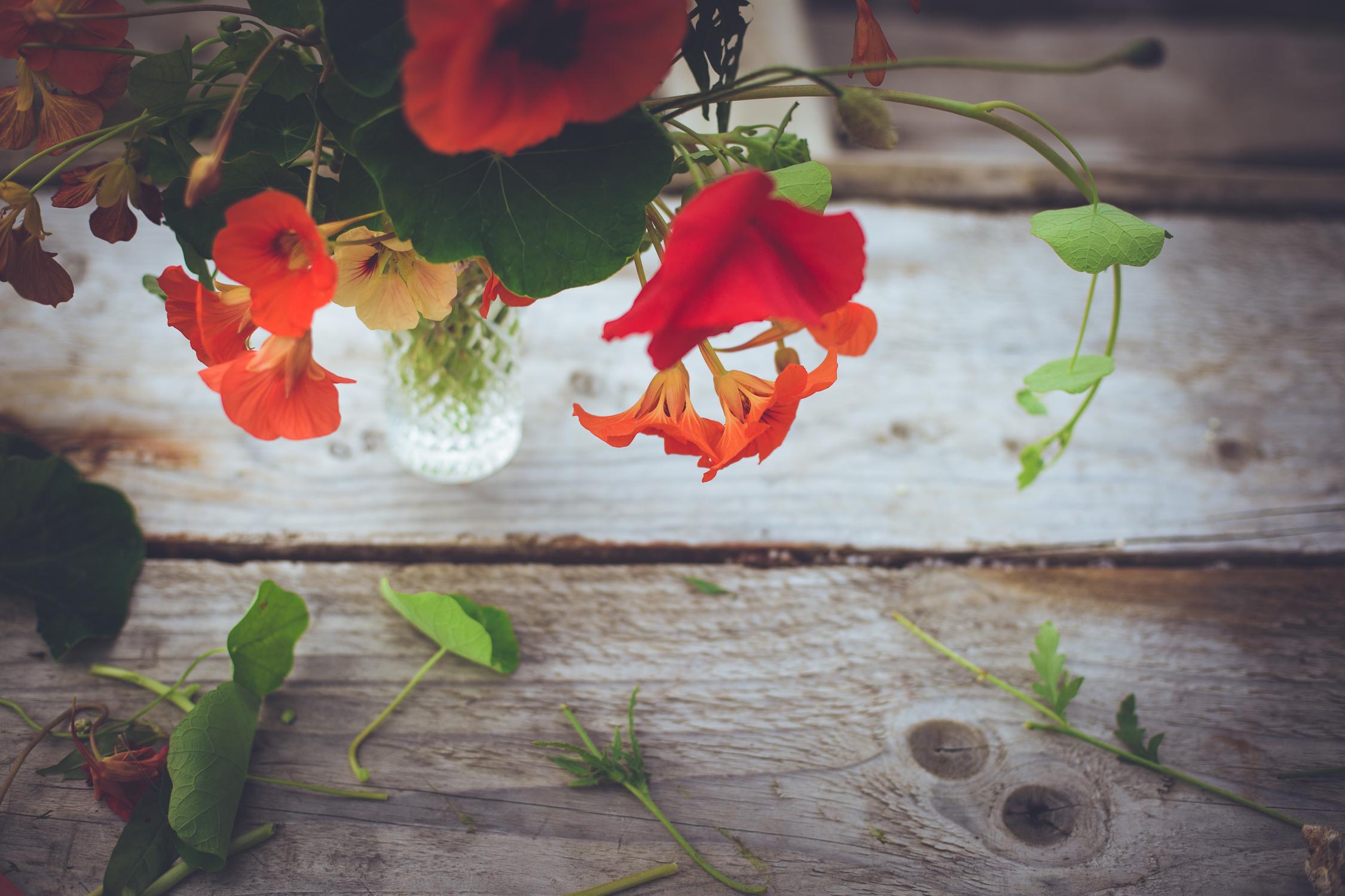 donegal petal-4.jpg