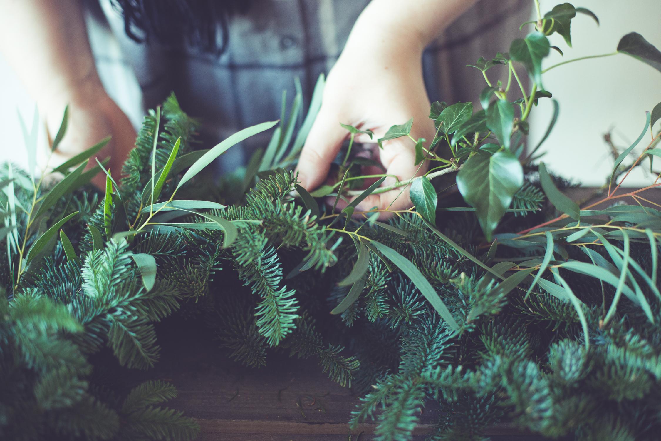 Wreath foraging-12.jpg