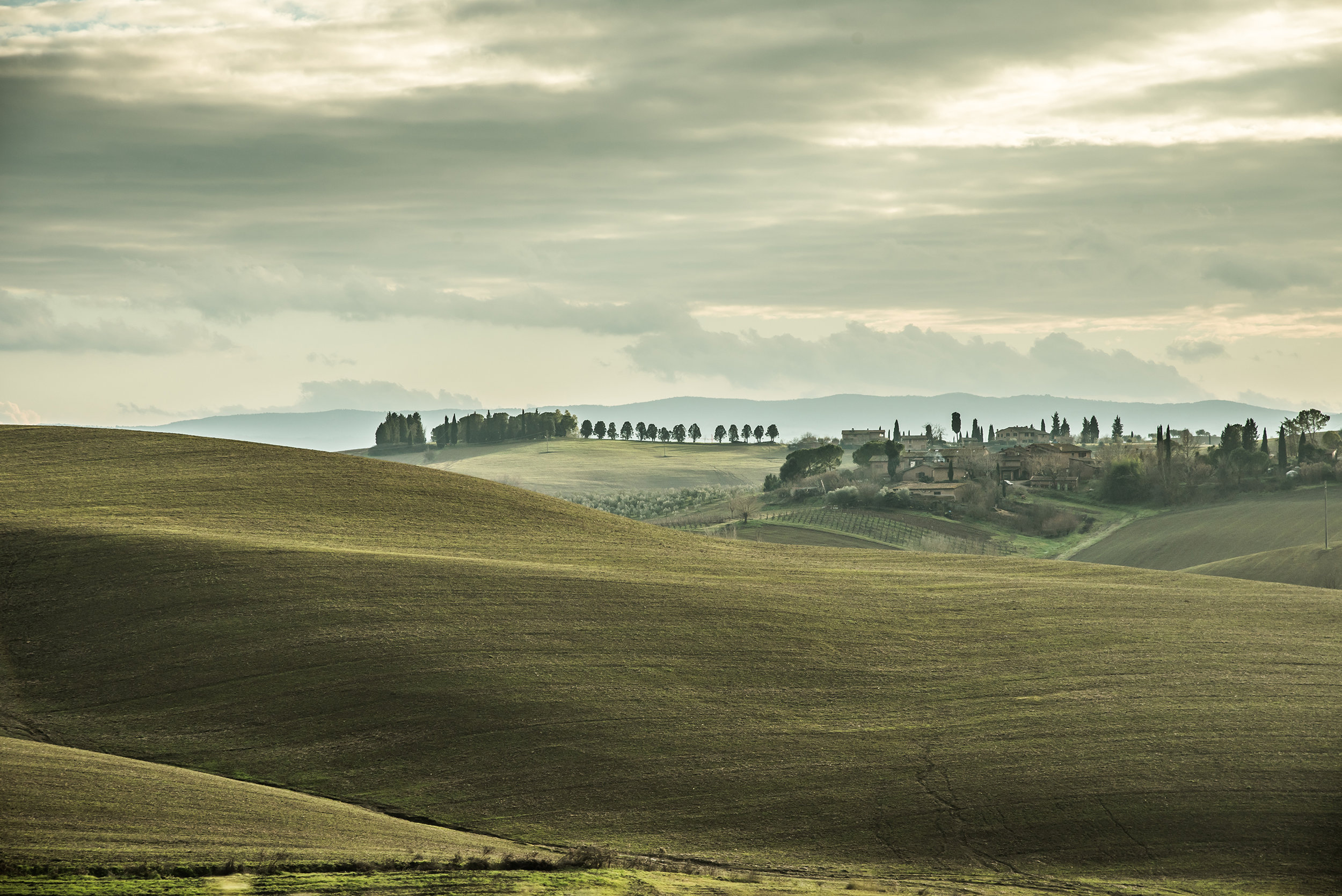 Landscapes12.jpg