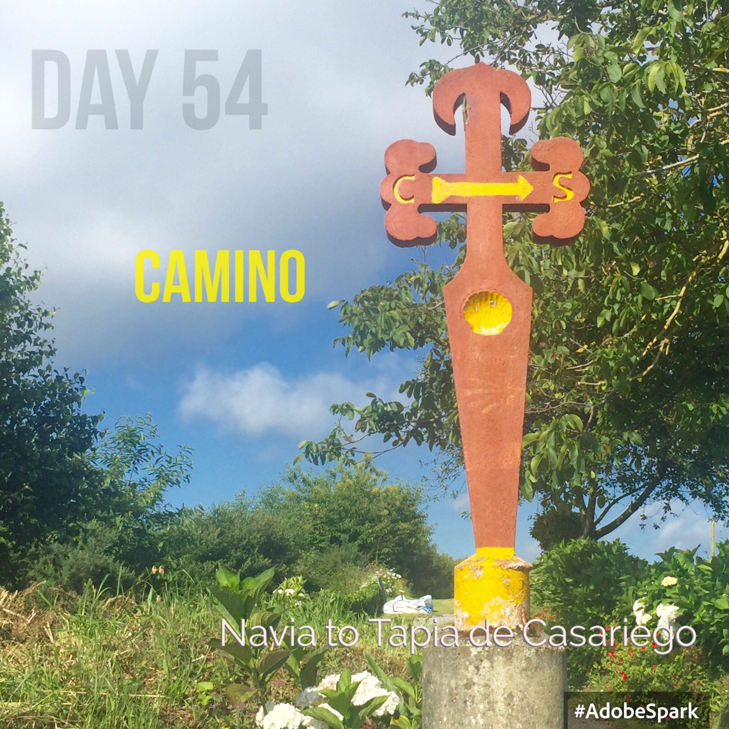 A new Camino sign to follow