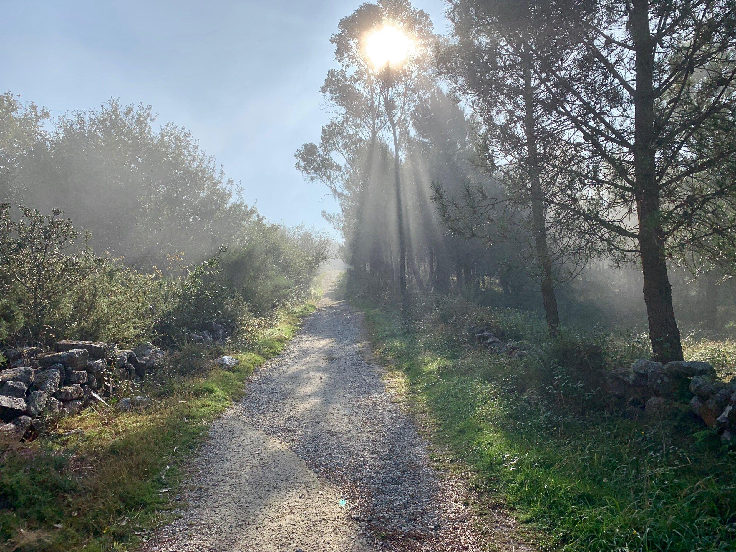 Buen Camino