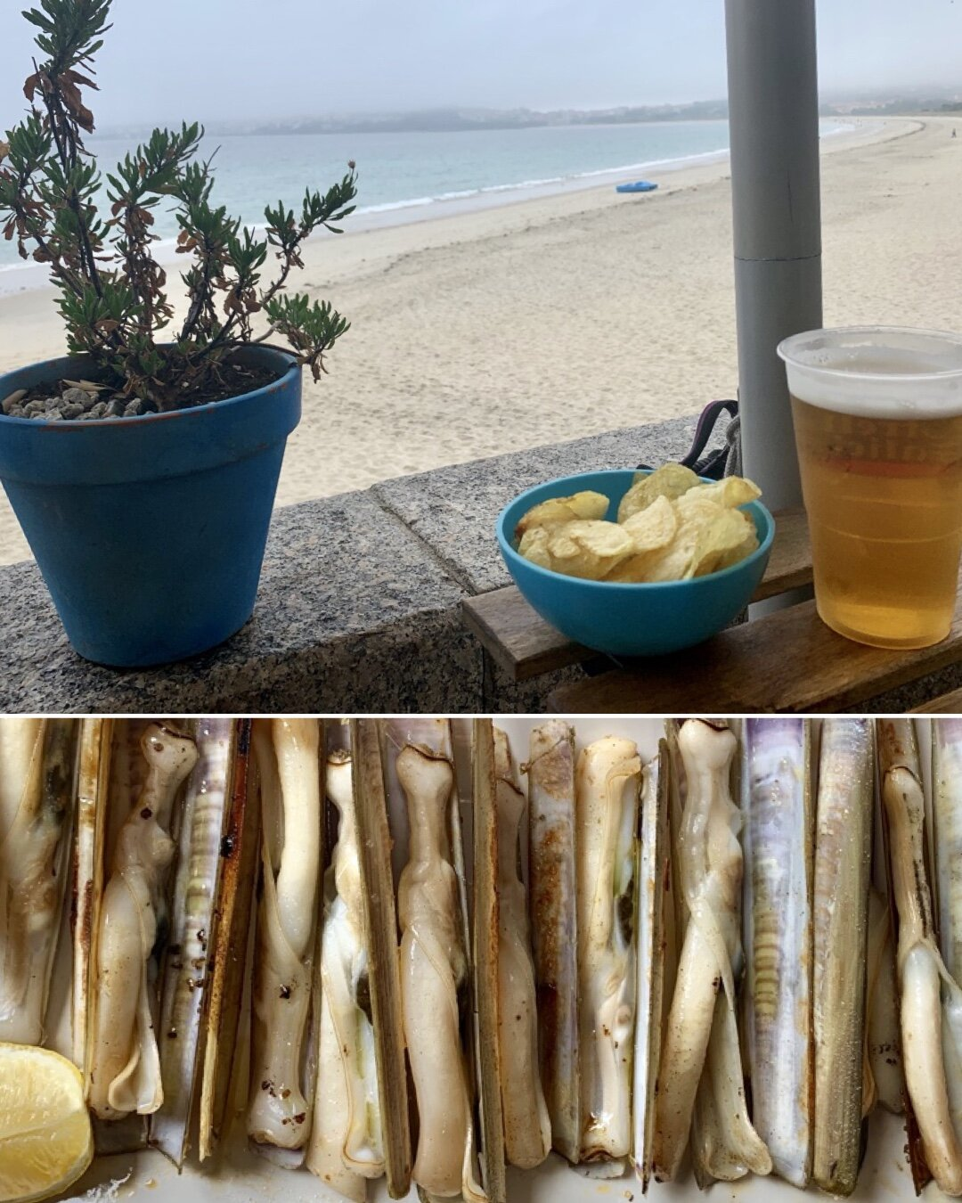 A celebratory beer followed by grilled razor-clams.
