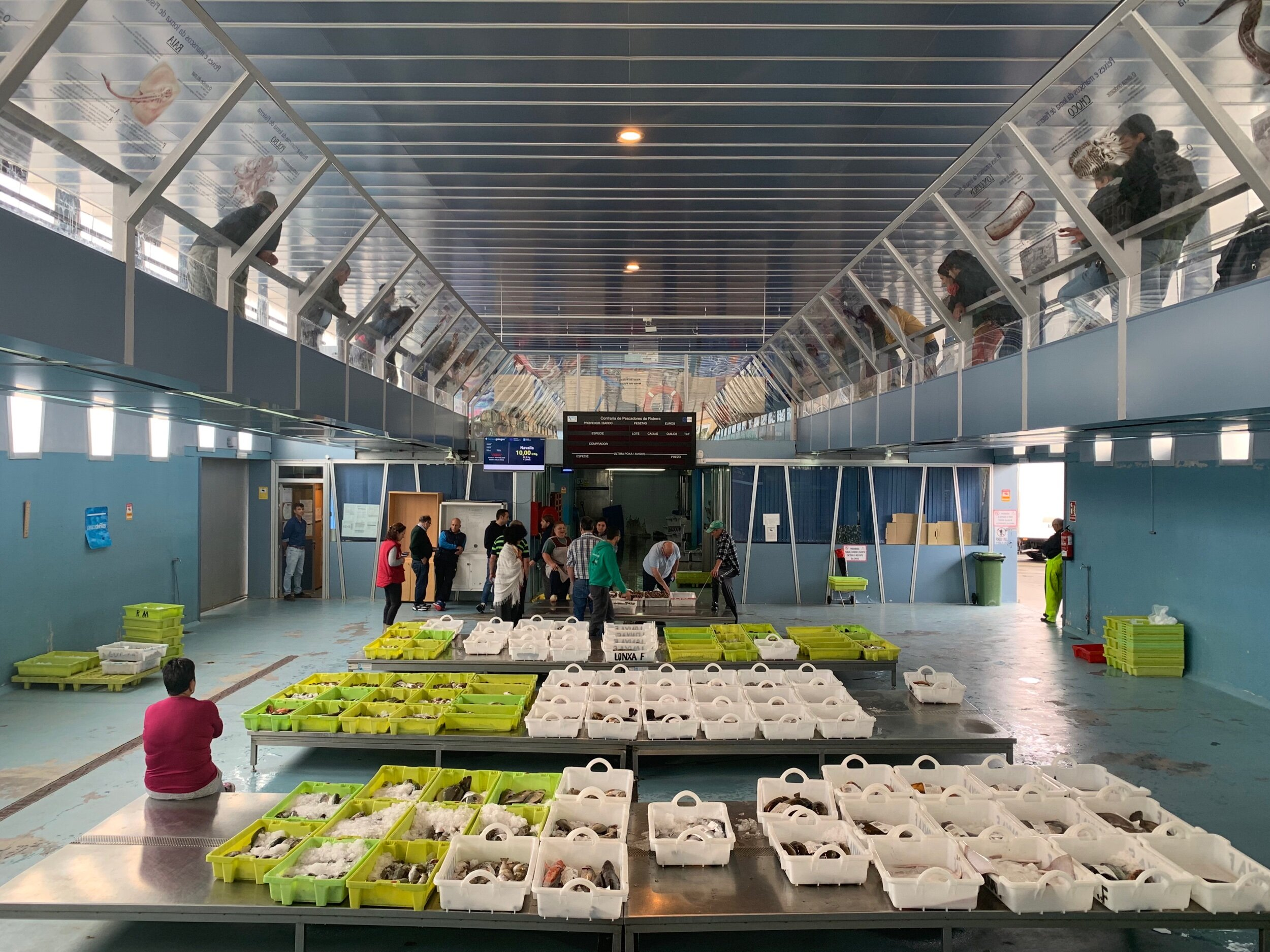 The wholesale fish market in Finisterre.