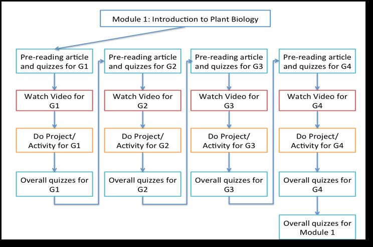 Flow Diagram for the module