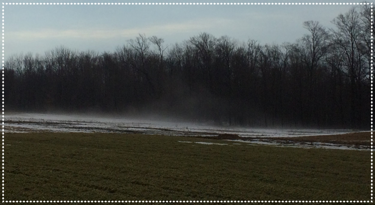 It got quite foggy when those 34 inches of snow melted!