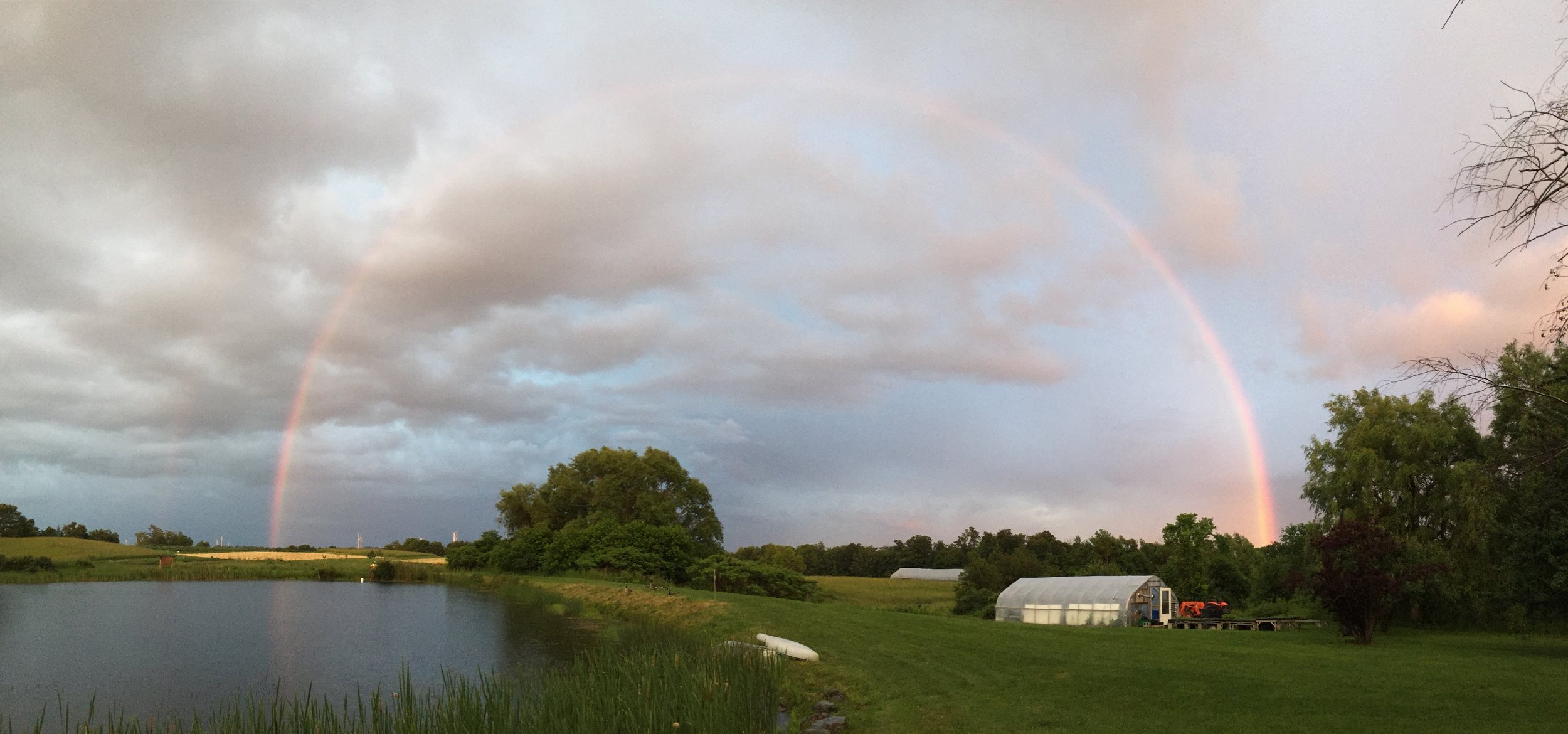 This is from last year… we haven't had enough sun for rainbows yet in 2019!