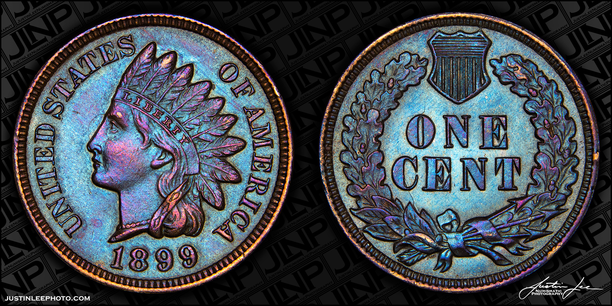 1899 Indian Head Cent Raw