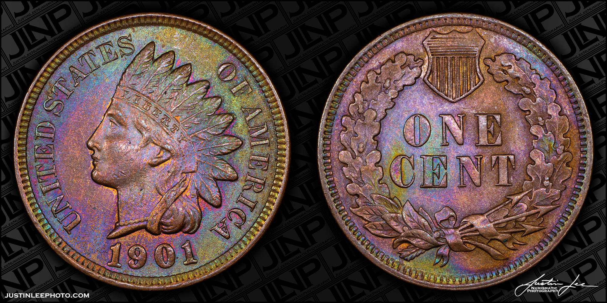 1901 Indian Head Cent Raw