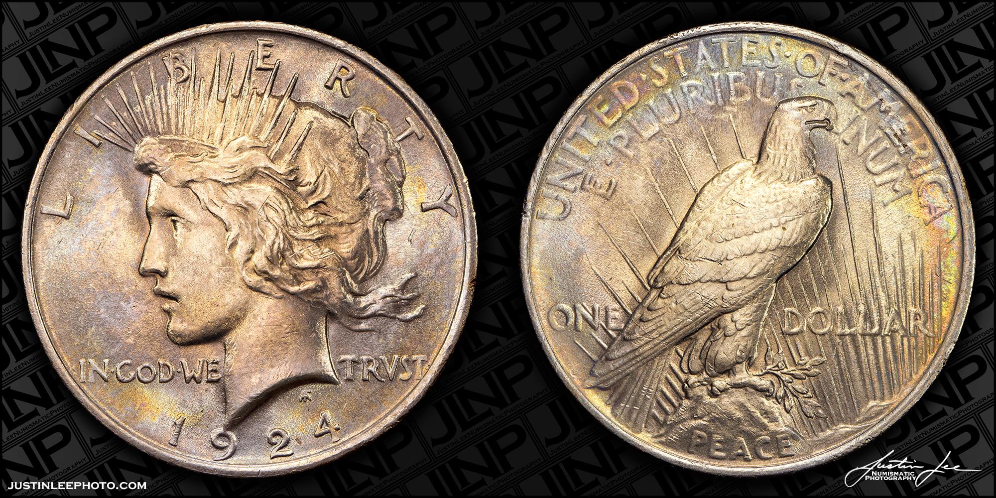 1924 Peace Dollar Raw