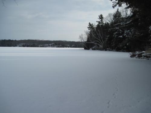 I wish I had a lake to skate away on. Hey, wait a minute... I do!