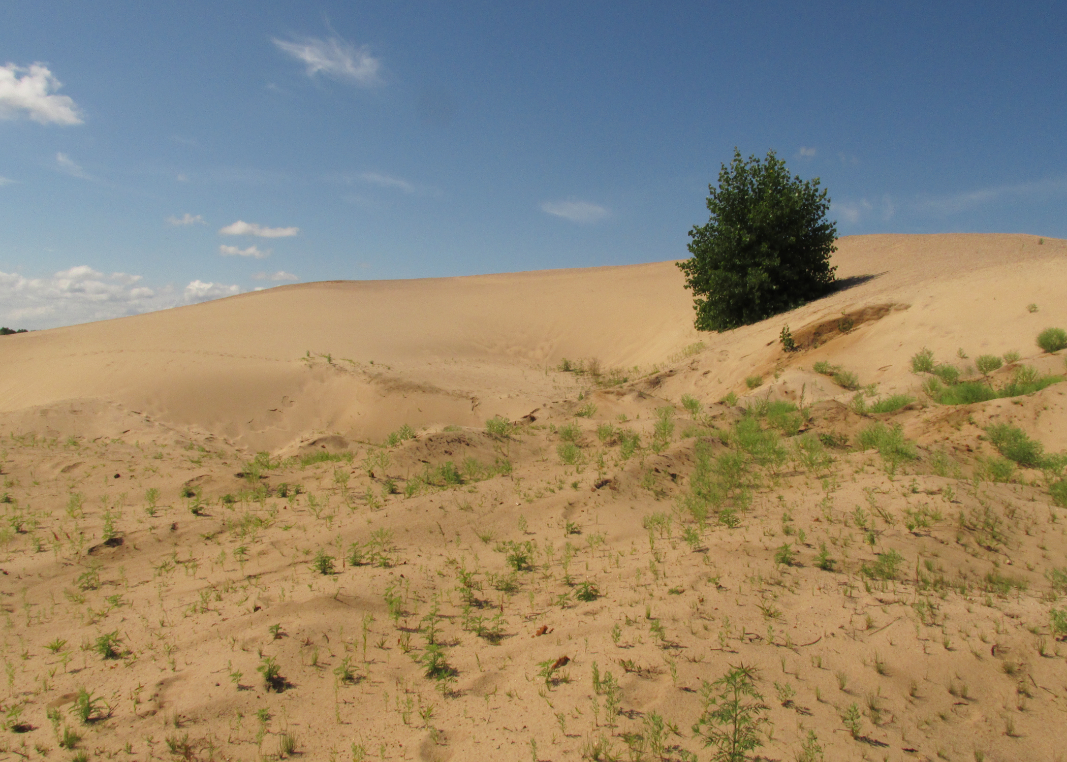 There are ghosts on these sand hills...