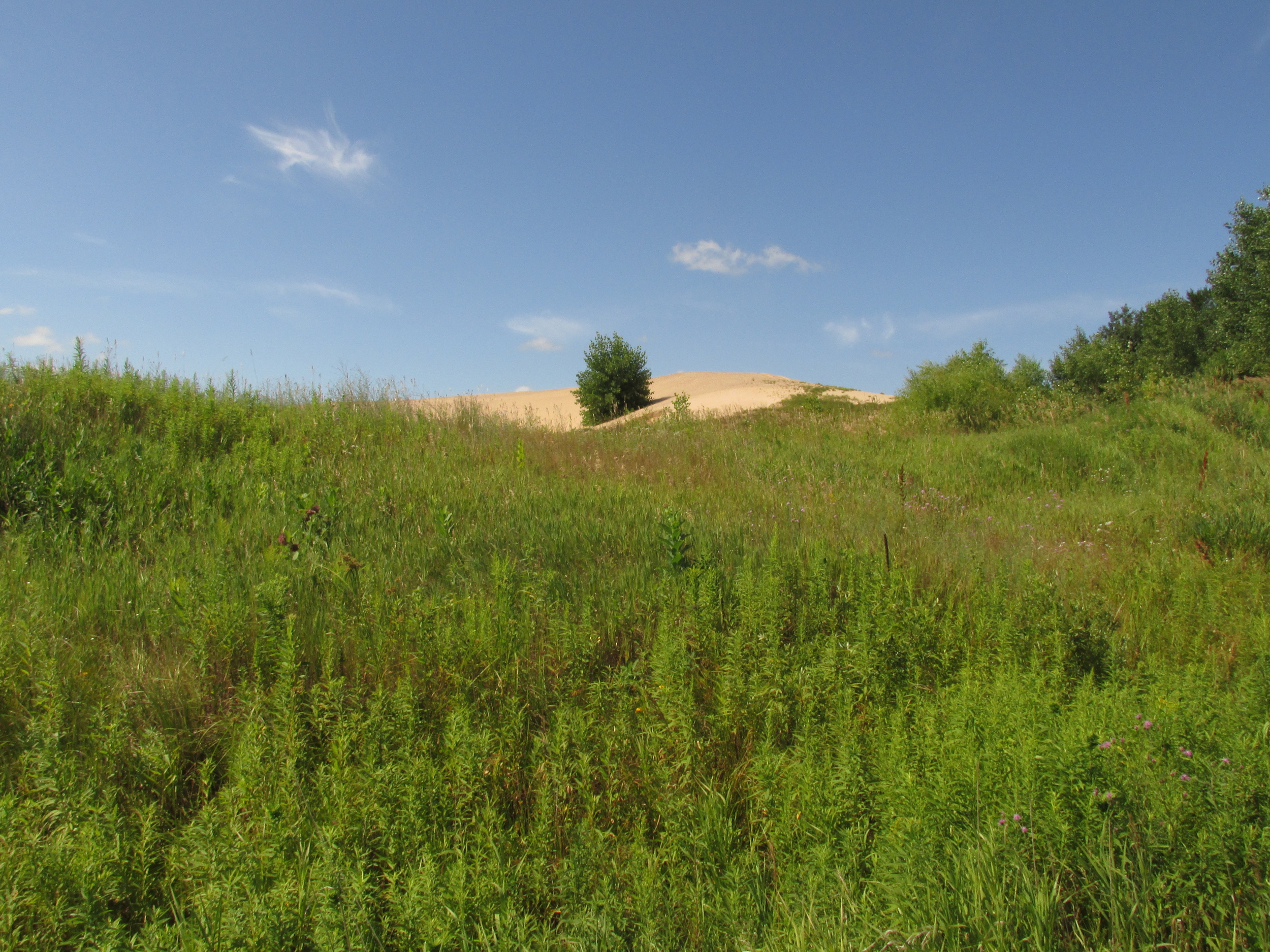 A view of the sand pile from the road.