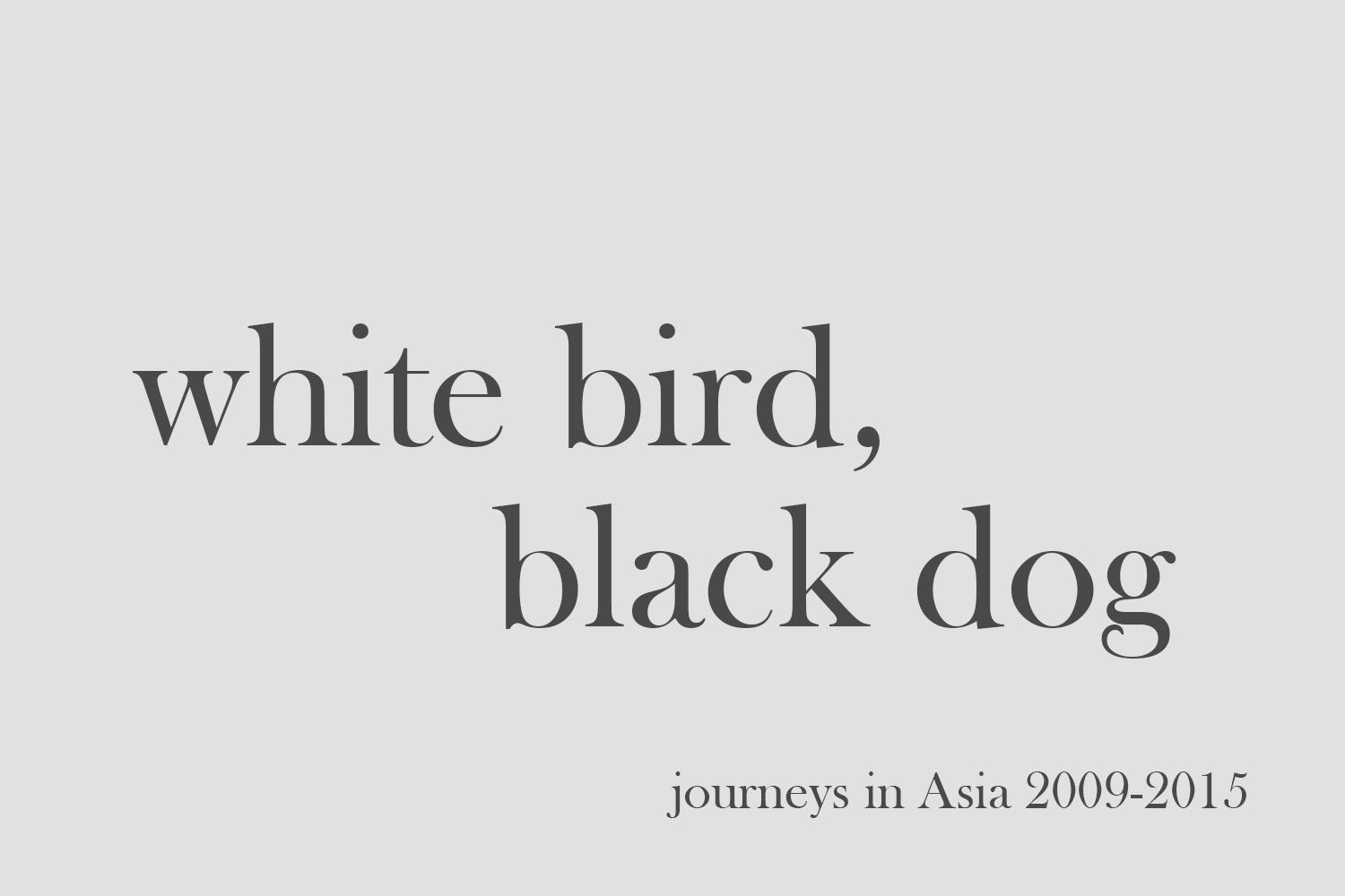 2_white bird black dog.jpg