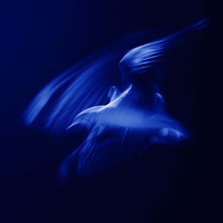 Blue Sonata #6