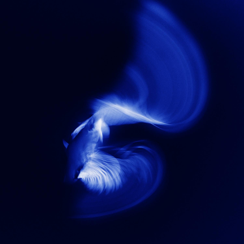Blue Sonata #9