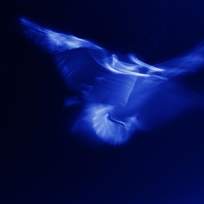 Blue Sonata #10