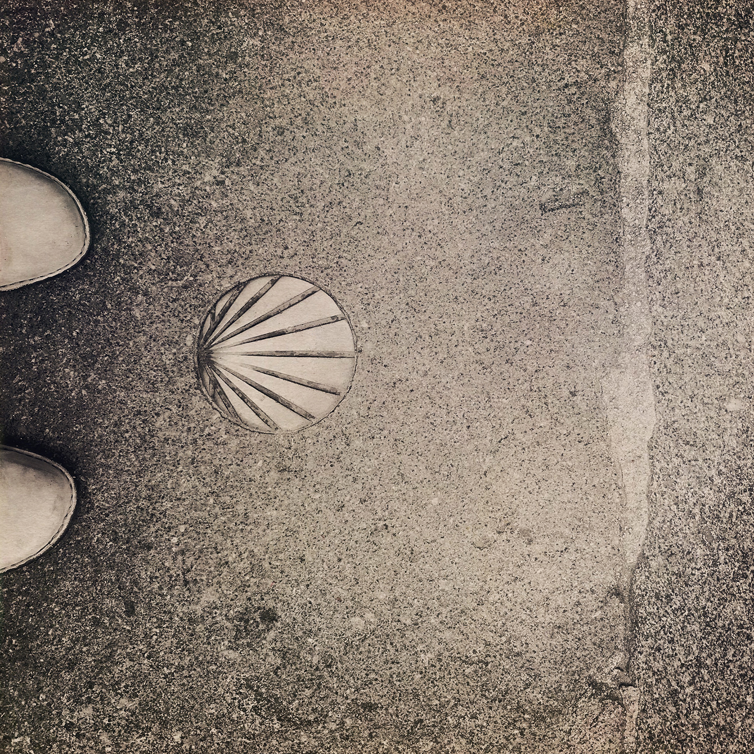 camino-shell-my-feet.jpg