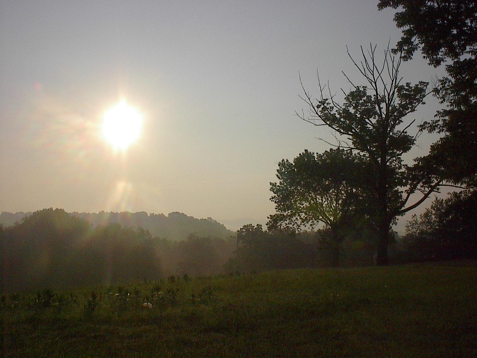 MorningSun.jpg