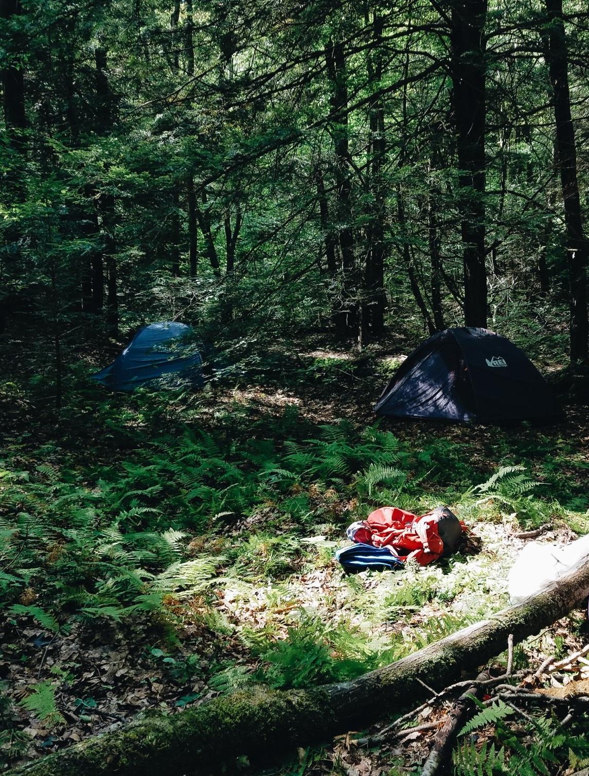 Tanbark_Tents.jpg