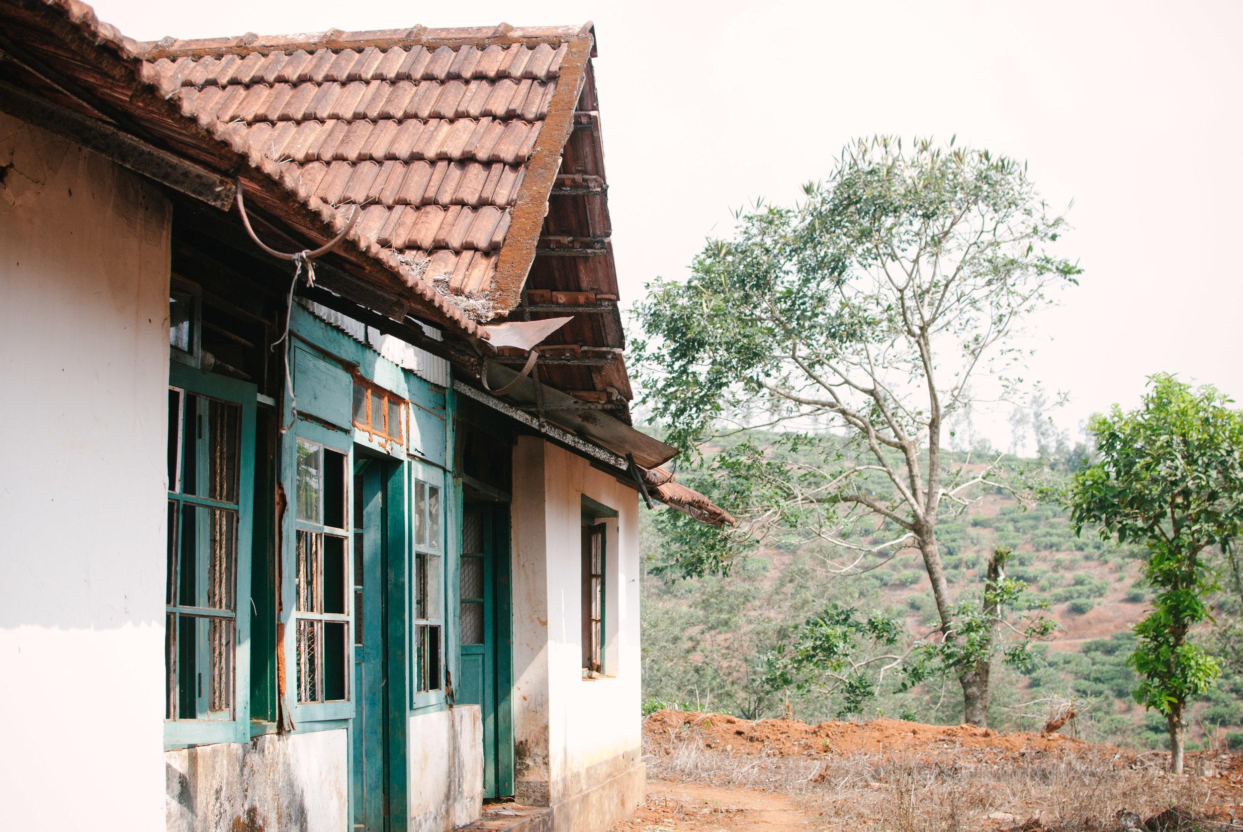 India W-0681.jpg