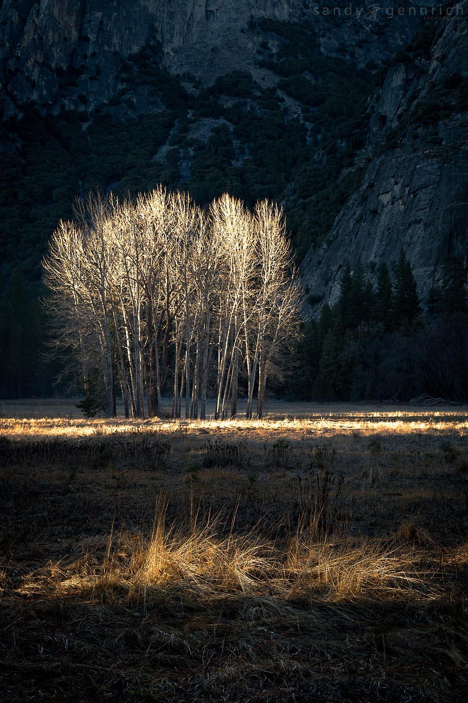 In the Spotlight-Yosemite-CA
