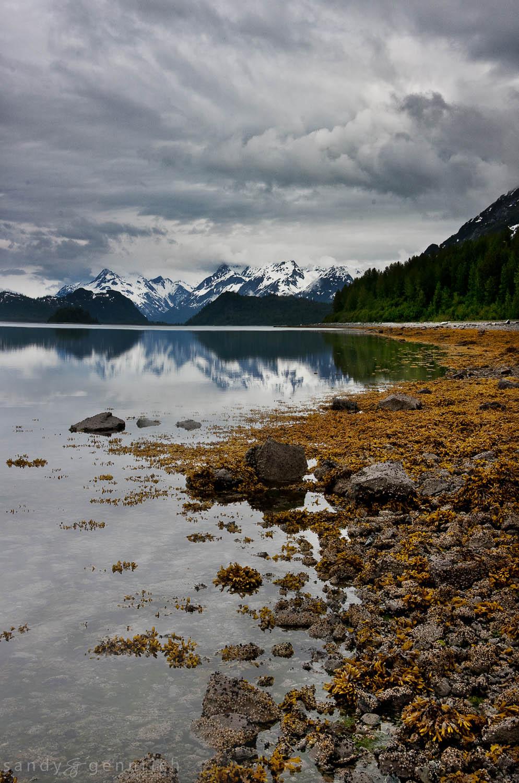 Skidmore Bay - Glacier Bay National Park - Alaska