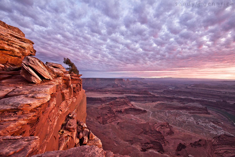 The Overlook -Dead Horse State Park - Moab UT.jpg