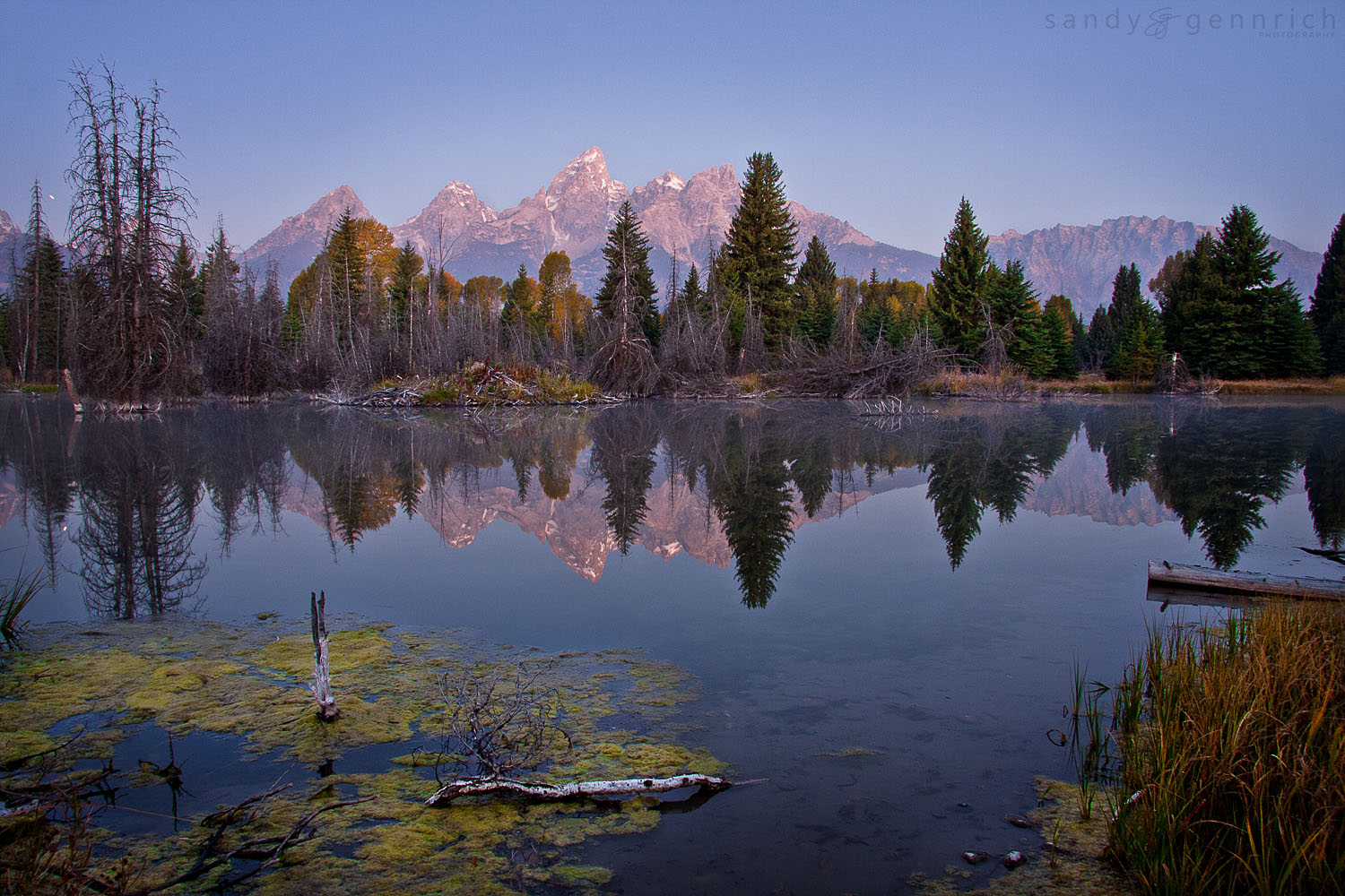 The Silence of Dawn - Grand Tetons National Park - Jackson - WY