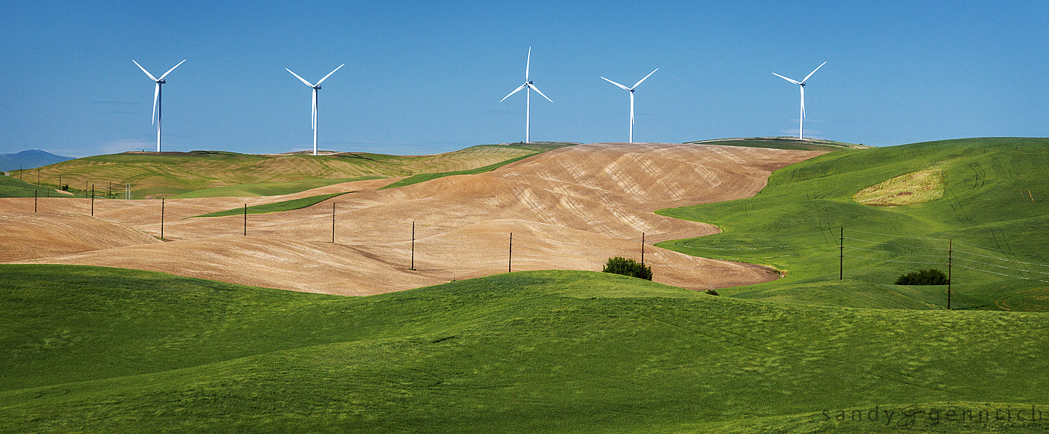 Up and Down - Multi Use Land - The Palouse - Colfax WA