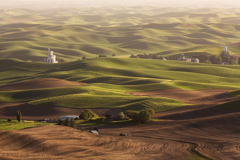Whitman County Growers - Steptoe Butte - The Palouse WA