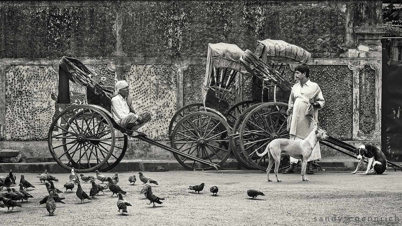 Your Chariot Awaits-Kolkata-Calcutta-India