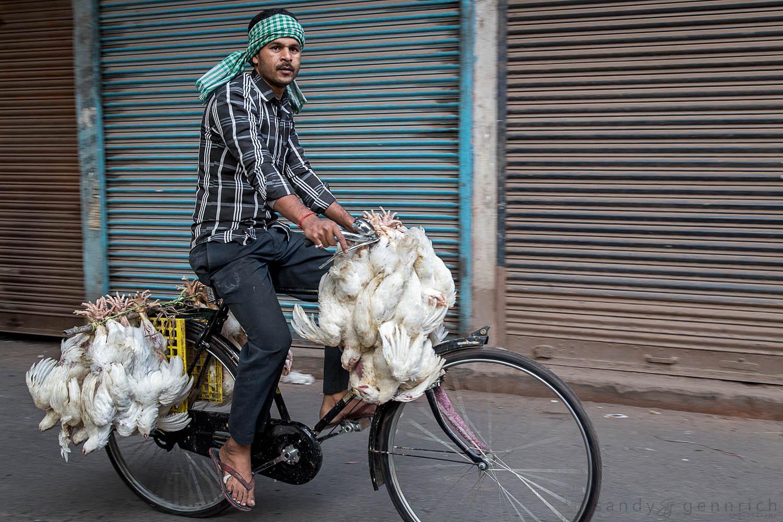 Fresh-Kolkata-Calcutta-India