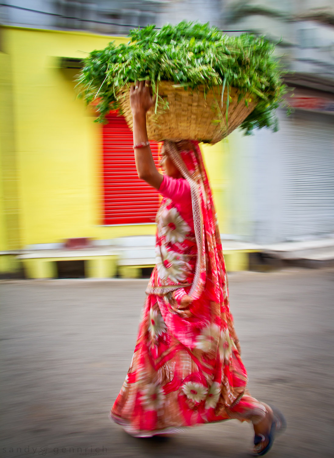 Transporting Greens - India in Motion - Udaipur - India
