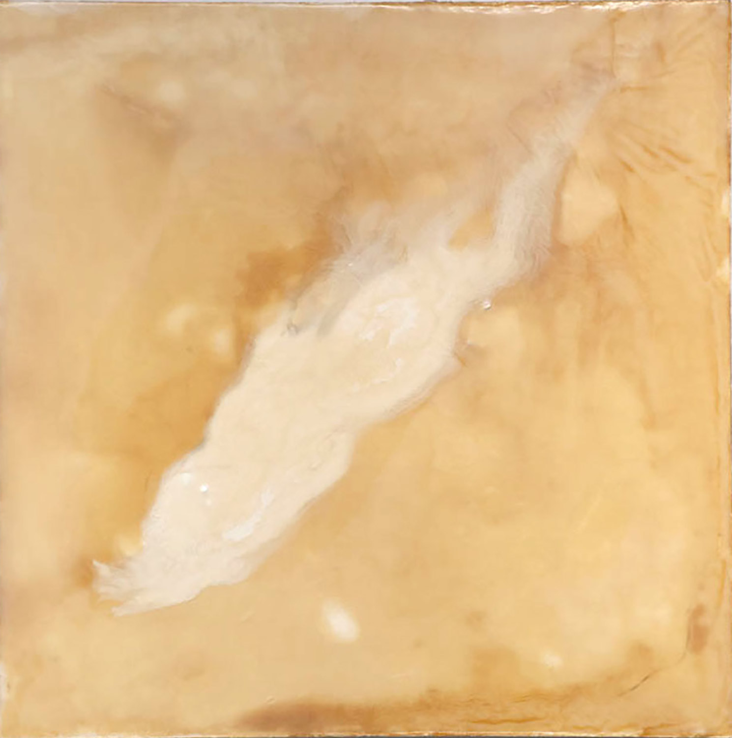 Bow Shock, 2011, Oil, resin and encaustic on panel, 32x32""