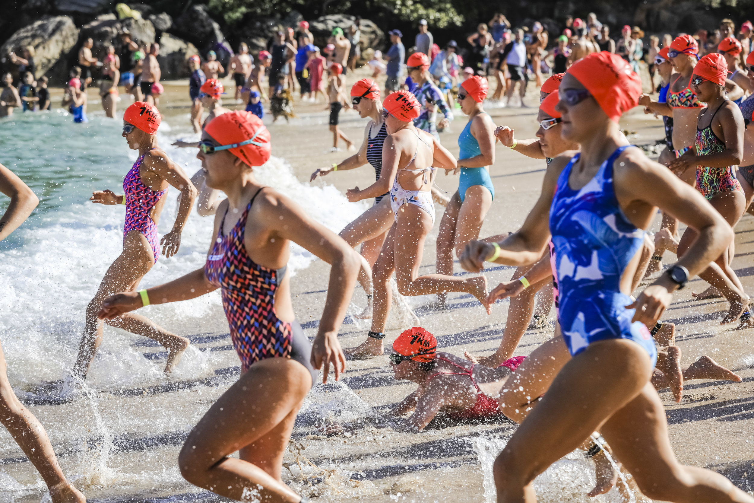 Sydney Morning Herald Cole Classic © Salty Dingo 2019 CG-026987.jpg