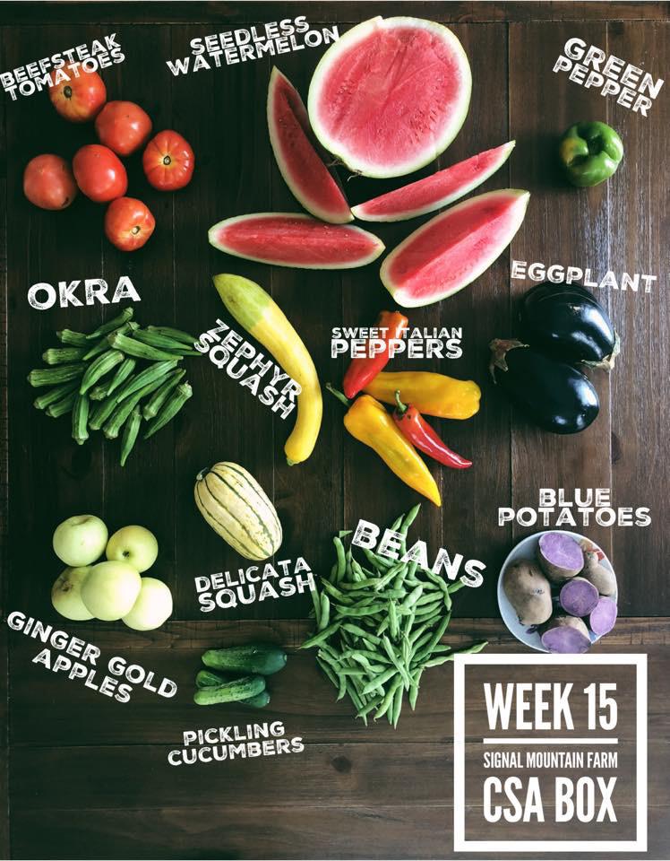 week15.jpg