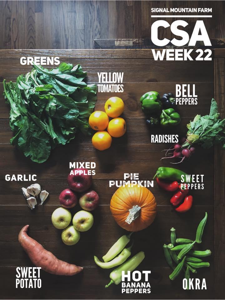 week22.jpg