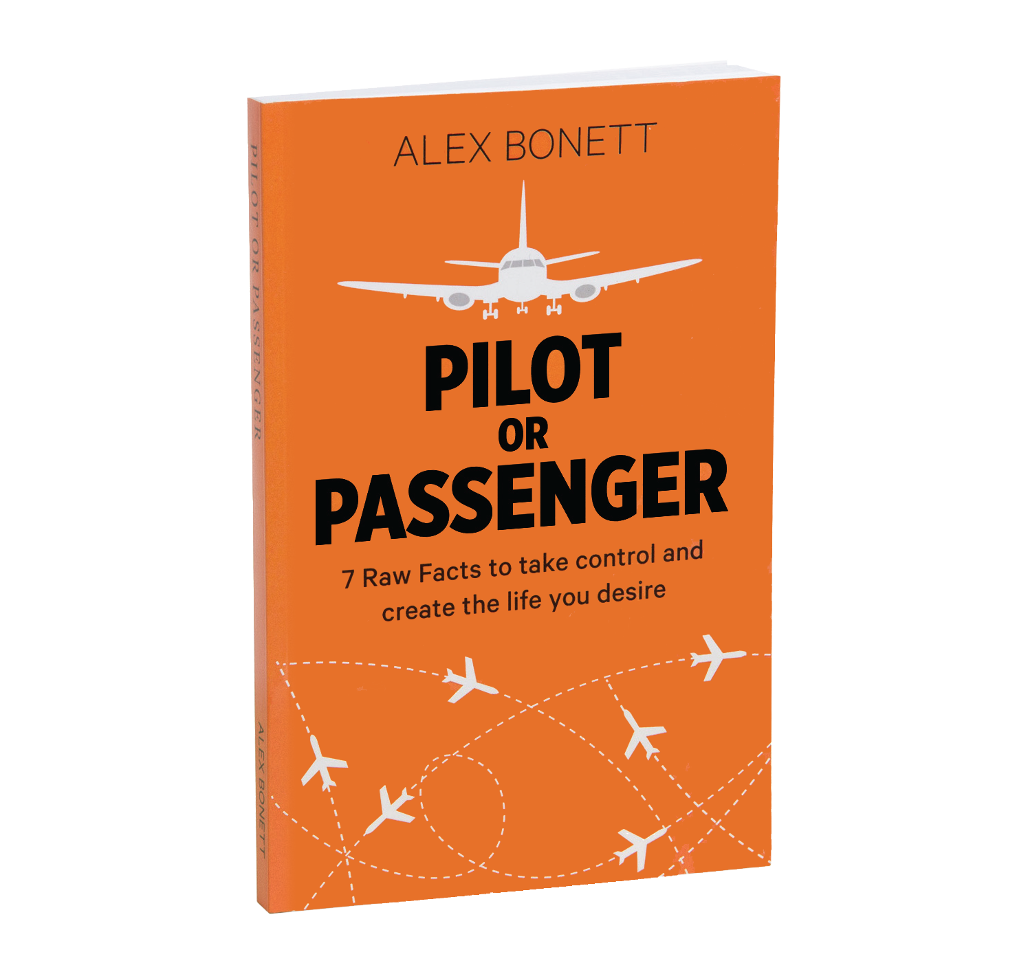 book-pilot-or-passenger3.png