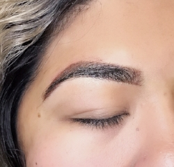 Soft powdered ombre brows