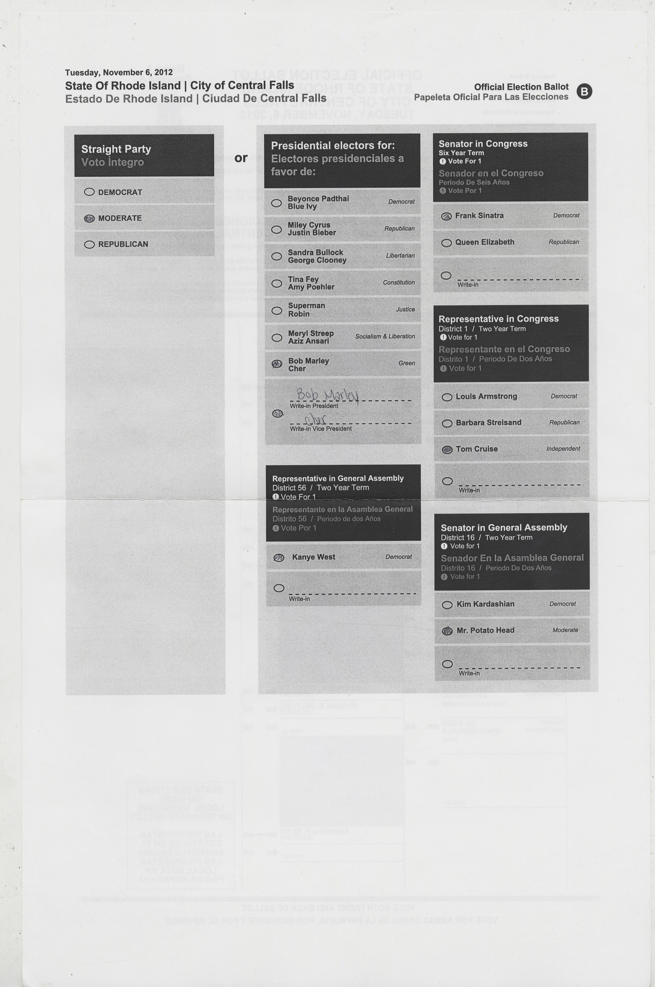 ballot_01b.jpg