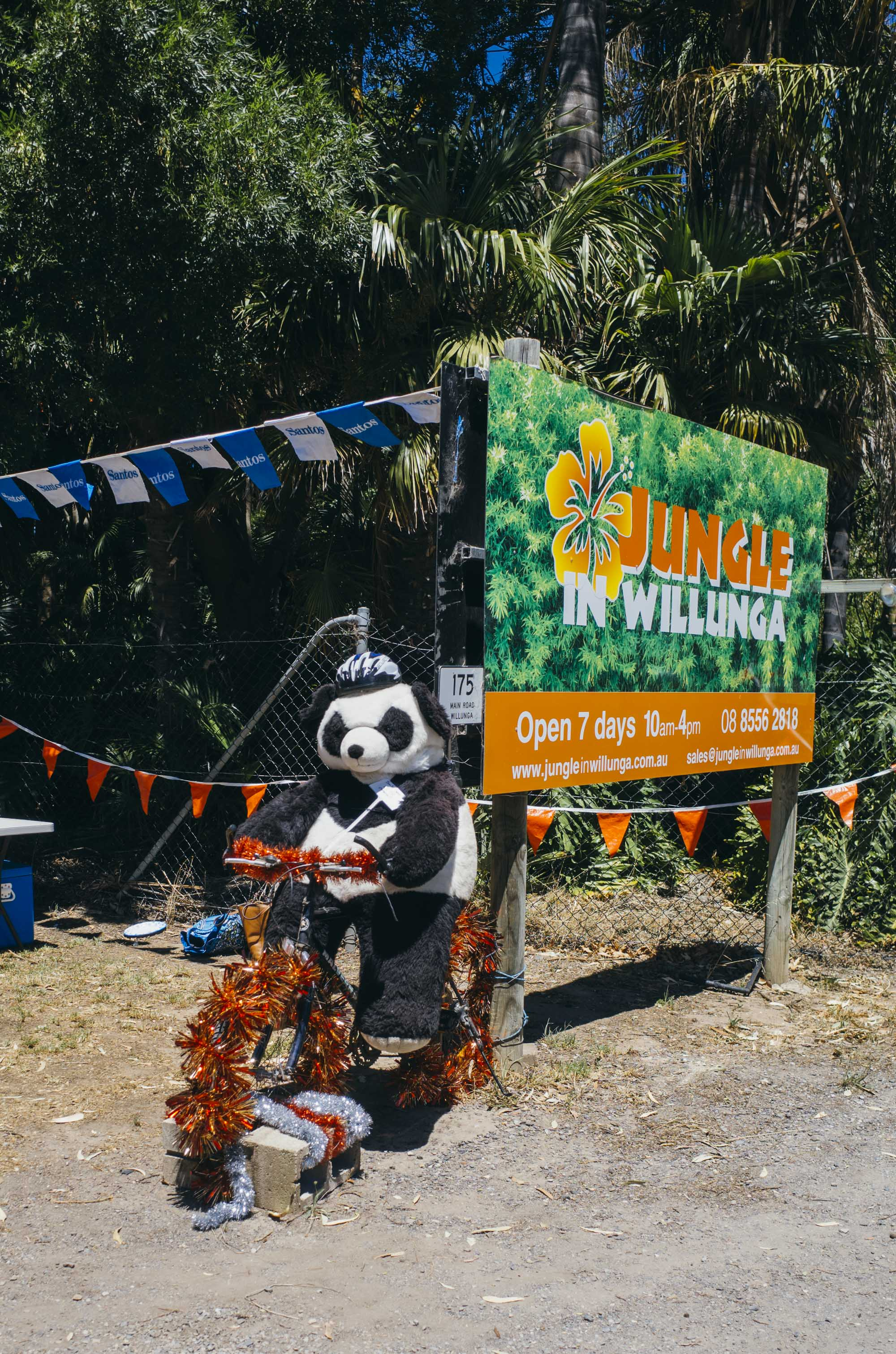 """""""Motherfucker I am here for the bamboo and little else. Also stop using Palm Oil"""" - – Jungle Panda"""