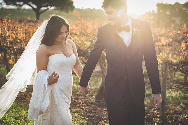 N I C O L A +  B R A D  Every heart sings a song, incomplete, until another heart whispers back . . . . . #runwildphotography #adelaideweddingphotographer #autumn #adelaide #bridetobe #photographer #wedding #weddinginspo #bride #beautiful #dress #model #portraits #landscape #photography #love #laugh #happy #beauty #bride #southaustralia #chateauyaldara #barossa #barossavalley