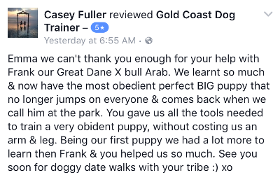 Gold Coast Dog Trainer Review 1.PNG