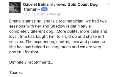 Gold Coast Dog Trainer Review 3.PNG