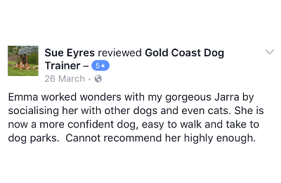 Gold Coast Dog Trainer Review 4.PNG