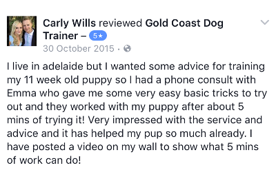 Gold Coast Dog Trainer Review 7.PNG