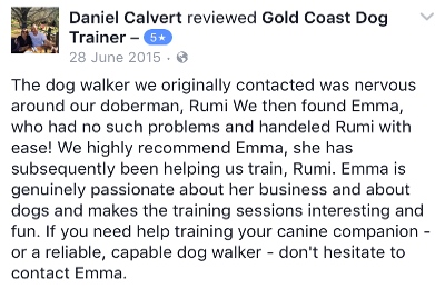 Gold Coast Dog Trainer Review 9.PNG