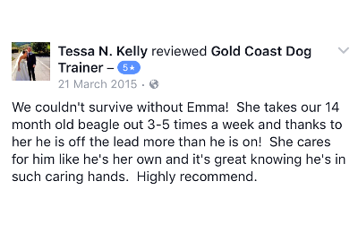 Gold Coast Dog Trainer Review 11.PNG